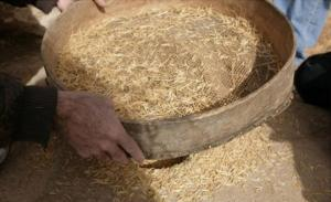 გინდათ ქვის ხანის პური გასინჯოთ?აი თქვენ რეცეპტი
