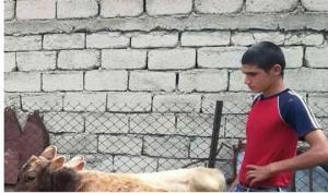 ემიგრანტებმა საქართველოში მცხოვრებ 14 წლის ილიას  საჩუქარი გაუკეთეს