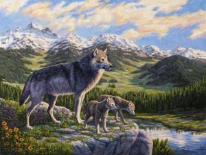 როგორ შეცვალეს მგლებმა მდინარეები?