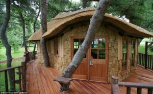 უნიკალური შენობები, რომელთა აშენებისას არქიტექტორებმა უარი თქვეს ხეების გაჩეხვაზე