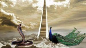 რატომ განდევნა  ღმერთმა გველი და ფარშევანგი სამოთხიდან?