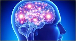 ტვინის მოვლის ხერხები
