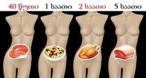 რამდენი ხანია საჭირო სხვადასხვა სახის საკვების მოსანელებლად  და რატომ არის მნიშვნელოვანი, რომ ეს იცოდეთ