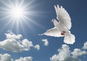 მხოლოდ ეკლესიაში სიარული ვერ გადაარჩენს ჩვენ სულს, მოწყალებაც უნდა გავიღოთ და რწმენაც უნდა გვქონდეს