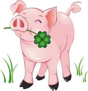 2019 წლის სასიყვარულო ჰოროსკოპი-ყვითელი ღორი სიურპრიზს ყველას უმზადებს