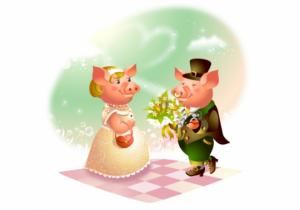 ზოდიაქოს 11 წყვილი, რომელიც 2019 წელს დაინიშნება ან იქორწინებს