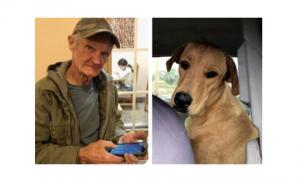 აშშ-ში ძაღლმა მეპატრონეს ესროლა - დაუჯერებელი ისტორიის დეტალები