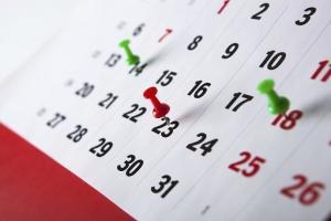 დაისვენებენ თუ არა საჯარო და კერძო სკოლები  23  და 28 ნოემბერს?
