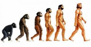 ევოლუცია - უდიდესი სანახაობა დედამიწაზე - მეცნიერების სიმფონია