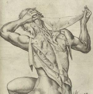 8 უცნობი ფაქტი ადამიანის კანის შესახებ