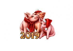 რაში გაგიმართლებთ 2019 წელს სხვა ზოდიაქოს ნიშნებზე მეტად?