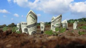 სასოფლო-სამეურნეო მიწების ყიდვის აკრძალვა  უცხოელ მოქალაქეებზე საკონსტიტუციო სასამართლომ გააუქმა