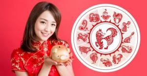 2019 წლის ჩინური ჰოროსკოპი-რას უმზადებს ყვითელი ღორი სხვა ნიშნებს?