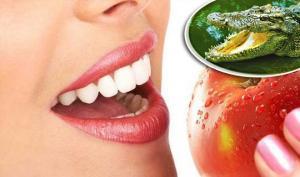 «მალე კბილის მკურნალობა და პროთეზირება საჭირო აღარ იქნება» – აცხადებენ ბრიტანელი მეცნიერები