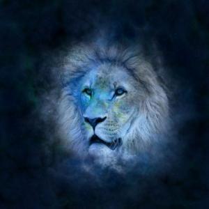 როგორი იქნება 2019 წელი ლომებისთვის?
