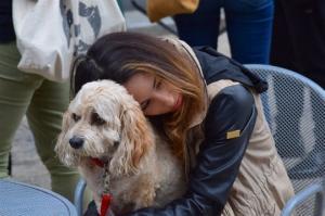 მეცნიერებმა დაამტკიცეს - საყვარელი ადამიანის და ძაღლის სიკვდილი  ერთნაირად მტკივნეულია!
