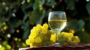 რქაწითელი  პირველი ღვინო იქნება მსოფლიოში, რომლის დალევაც მარსზე იქნება შესაძლებელი?