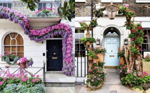 ლონდონის გასაოცრად ლამაზად მორთული კარმიდამოები - თვალს ვერ მოსწყვეტთ!