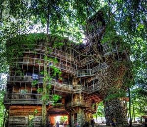 მღვდელმა საკუთარი ხელებით ხეზე 10 სართულიანი სახლი ააშენა. შესანიშნავად გამოიყურება