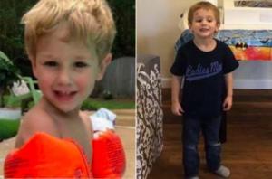 ტყეში დაკარგული სამი წლის ბავშვი დათვმა გადაარჩინა