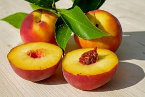 ტოპ 10 ხილი, რომლებიც იწვევს ცხიმების დაწვას ( + ფოტოები )