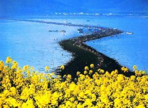 ბიბლიური სასწაული კორეის კუნძულზე