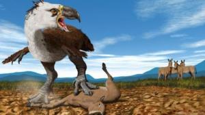 შემზარავი ფრინველი, რომელიც ნისკარტის ერთი დარტყმით ცხენს ხერხემალში ამტვრევდა