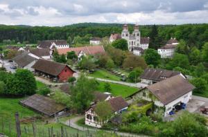 ექსპერიმენტი შვეიცარიის სოფელში, სადაც უმუშევრებს 2600 დოლარს გადაუხდიან