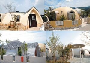 იაპონური პენოპლასტის სახლები სულ რაღაც 2000 დოლარად