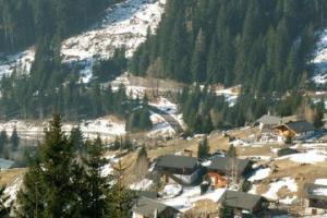 შვეიცარიაში ქართველ მძარცველებს გასაძარცვ სახლში დაეძინათ და თავზე მეპატრონე დაადგათ