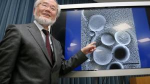 იაპონელმა მეცნიერმა დაამტკიცა შიმშილობისა  და მარხვის სასწაულმოქმედი   ძალა და ამისათვის ნობელის  პრემია მიიღო