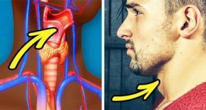 8 უცნაური ფაქტი მამაკაცის სხეულის შესახებ