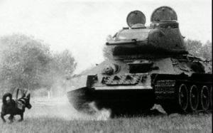 ნაცისტური გერმანიის საბრძოლო ტექნიკა