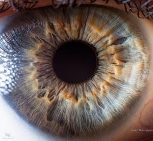 5 პროდუქტი, რომელიც სასარგებლოა თქვენი თვალებისთვის და 5 პროდუქტი, რომელსაც მოაქვს ზიანი მათთვის