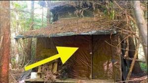 მამაკაცმა ტყეში კოტეჯი იპოვა, ხოლო რაც შემდეგ მოხდა, ნამდვილად დაუჯერებელია...
