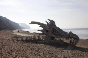 ეს უნდა ნახოთ!  სანაპიროებზე გამორიყული 10 უცნაური რამ!