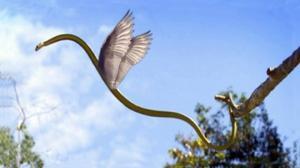 დაუჯერებელია - აღმოჩენილია გველთა სახეობა, რომელსაც ფრენა შეუძლია