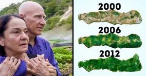 ბრაზილიელმა წყვილმა 20 წელი გაატარა ტყის გაშენებაში, რის შემდეგაც ათასობით გარეული ცხოველი დაუბრუნდა სახლს