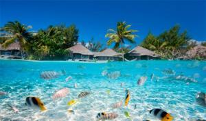 მზე, გამჭვირვალე წყალი, მარჯნული რიფები... – სამოთხის მსგავსი 10 კუნძული დედამიწაზე