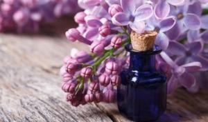 შეინახეთ მინის ქილაში იასამნის ყვავილები და დაასხით მცენარეული ზეთი. რატომ?