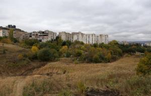 თემქის ხევში საქალაქო პარკი გაშენდება