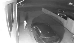 ამოუცნობი არსება ღამით ქუჩაში დადის - სოცქსელში უცნაური ვიდეო ვრცედება