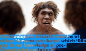 არქეოლოგებმა ადამიანის ევოლუციური განვითარების დაკარგული რგოლი აღმოაჩინეს