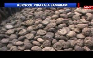 """""""Pidakala Samaram""""-დღესასწაული ინდოეთში, სადაც გამხმარი საქონლის ფუნის გუნდას ესვრის ერთმანეთს 2 ნაწილად გაყოფილი სოფელი"""