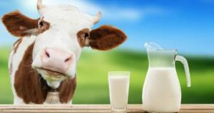რძე! ჯანმრთელობისთვის აუცილებელი საშუალება