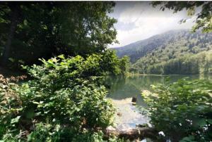 უნიკალური ადგილები საქართველოში