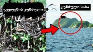 3 კუნძული, სადაც ფეხი არასოდეს უნდა დაადგათ!
