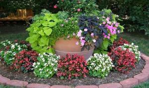 ბაღის და სახლის გაფორმება თიხის ქოთნებით – 75 საოცარი იდეა (ნაწილი III)