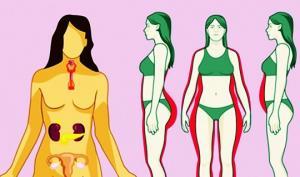 ქალის ჯანმრთელობისთვის 5 სასარგებლო და 5 მავნე პროდუქტი – ცხოვრება «წითელი ხაზების» გარეშე