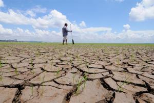 მეცნიერებმა გააკეთეს პროგნოზი, თუ რომელ მხარეებს ემუქრება კლიმატური კატასტროფები